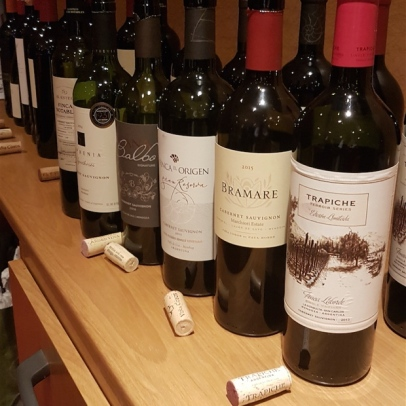 Masterclasses on cabernet sauvignon and franc