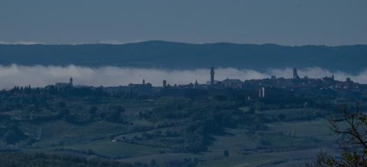 The Siena Skyline from Bindi-Sergardi