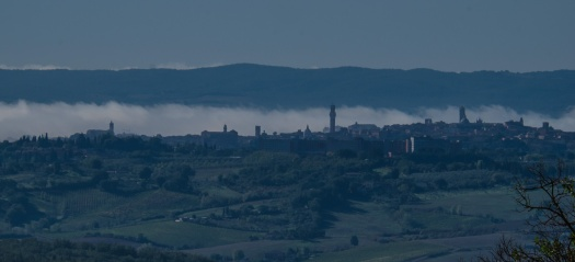 The Siena Skyline from Bindi-Sergardi