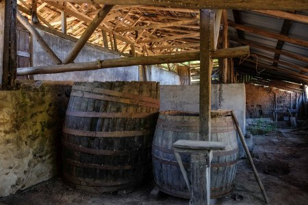 De Martino's 200 year-old pipas in Itata (the winery is due for some renovation)