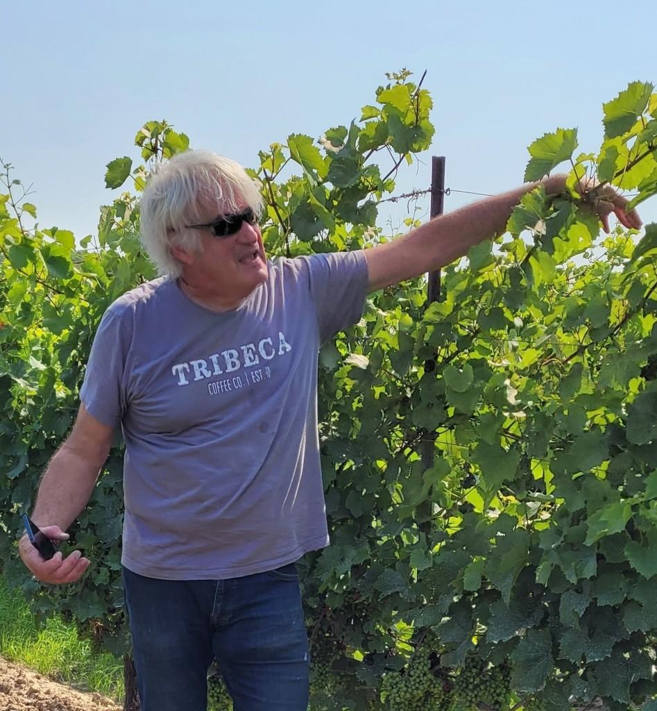 Thomas Bachelder of Le Clos Jordanne & Bachelder Wines
